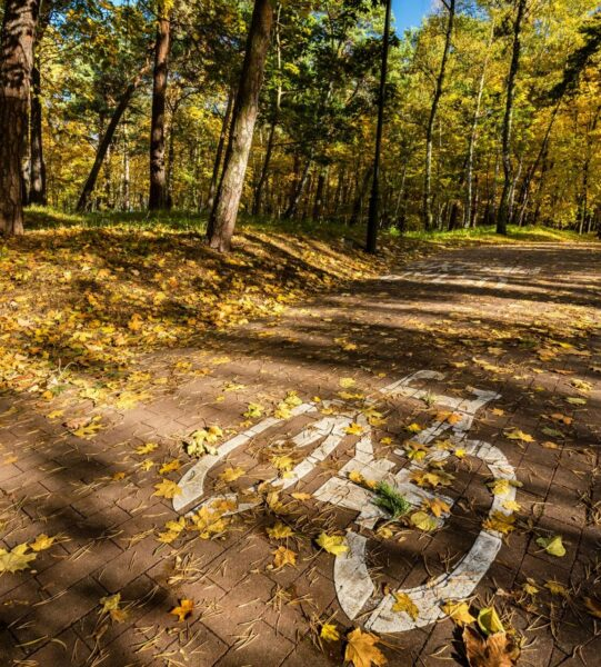 Bike Road Sign In A Park On Autumn